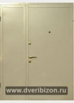 Дверь (покрас НЦ)